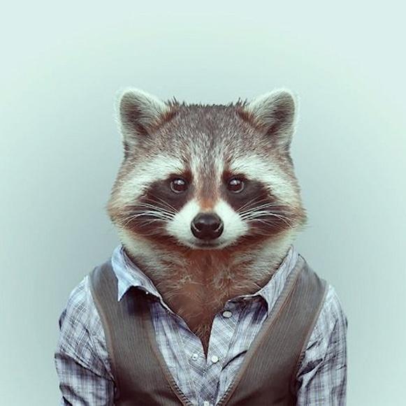 Bem Legaus!: Modelos animais
