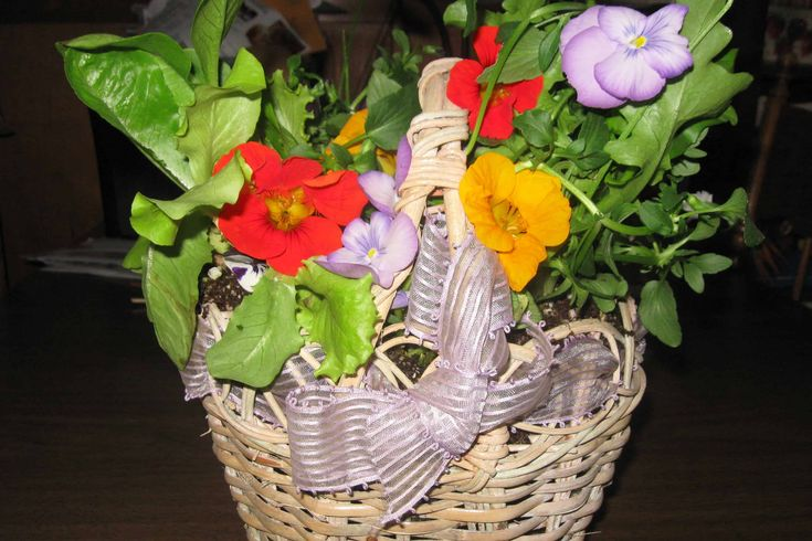 Create a living Easter basket with bunny-worthy greens, veggies and flowers for a cheap, healthy gift alternative that will last. Don't forget the carrots!