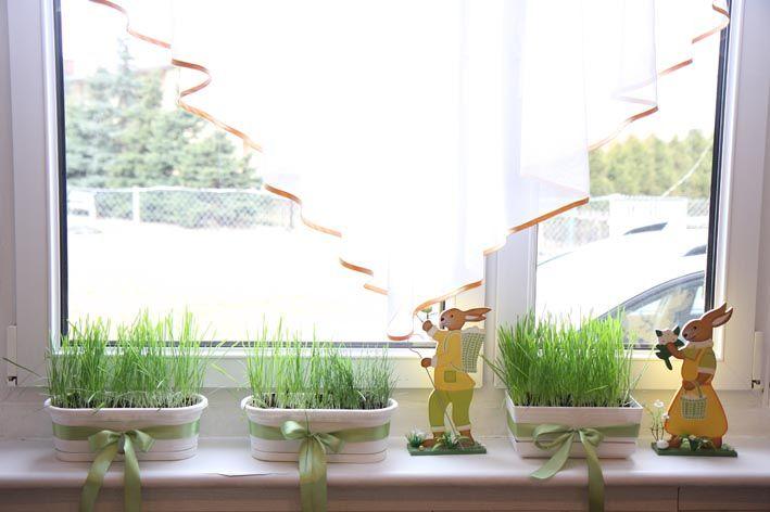 Kwiaty Na Parapet Jb Wielkanocne Dekoracje Planters Plants Planter Pots