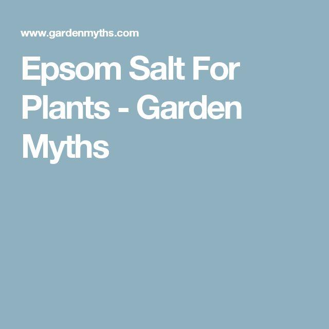 Epsom Salt For Plants -  Do NOT use on plants