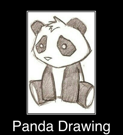 how to draw cute animals panda