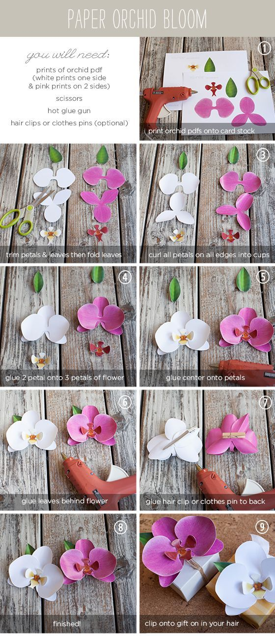 DIY Paper Orchid ~ decorate that special gift with one or a group of these gorgeous orchids. Get the printable download for the cut-out here: http://www.elli.com/blog/wp-content/uploads/2012/08/WhitePaperOrchid.pdf