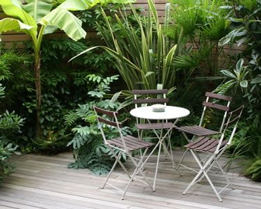 Exotic smaller garden: Creative Landscapes