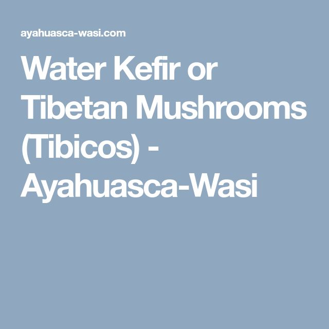 Water Kefir or Tibetan Mushrooms (Tibicos) - Ayahuasca-Wasi
