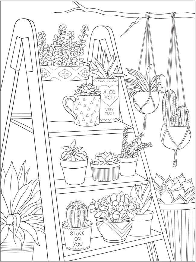 Welcome to Dover Publications - CH Stunning Succulents # ...