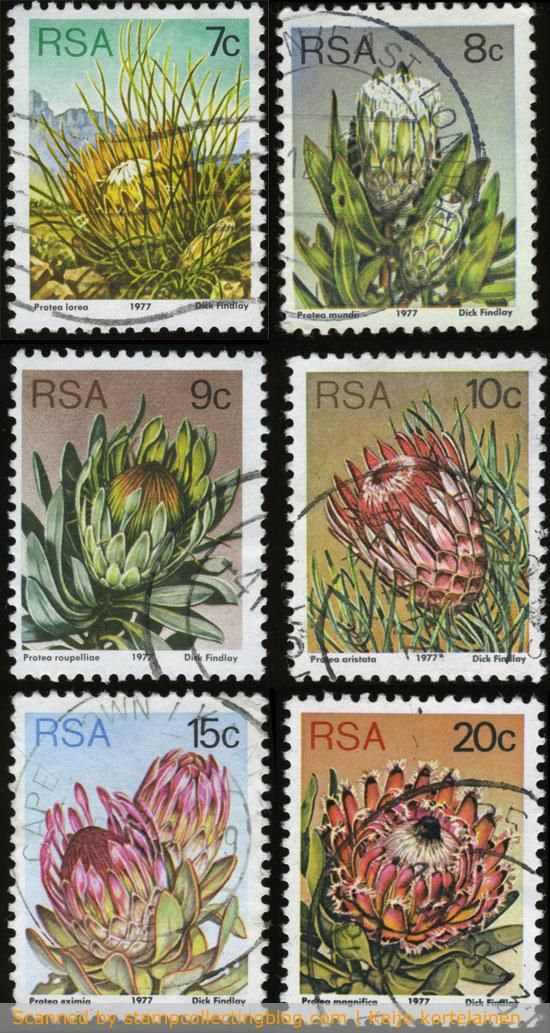 1977 South Africa, Protea definitive stamps values from 7-20c, perf.12½.  This third set for the republic was designed by Dick Findlay.