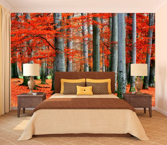 Autumn park of red beech trees mural wallpaper, repositionable peel & stick wall paper, wall covering