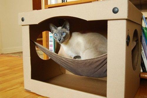 Casa cama para gato con hamaca