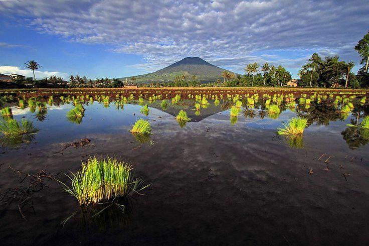 Pagar Alam, Indonesia