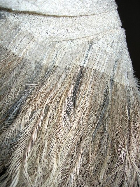 Google Image Result for http://shirleytreasure.files.wordpress.com/2008/01/emu-feather-stole-008.jpg