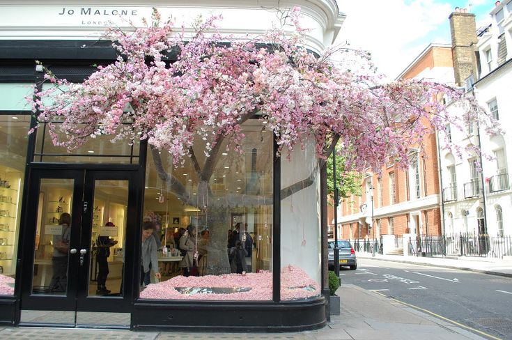 Love this Jo Malone RHS Chelsea flower show window display, also JM grapefruit cologne every(other)day! <3
