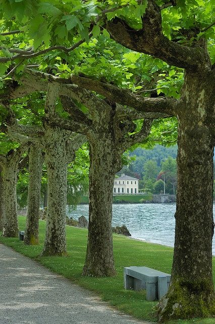 **Villa Melzi, Lake Como, Italy.-one day I will return here