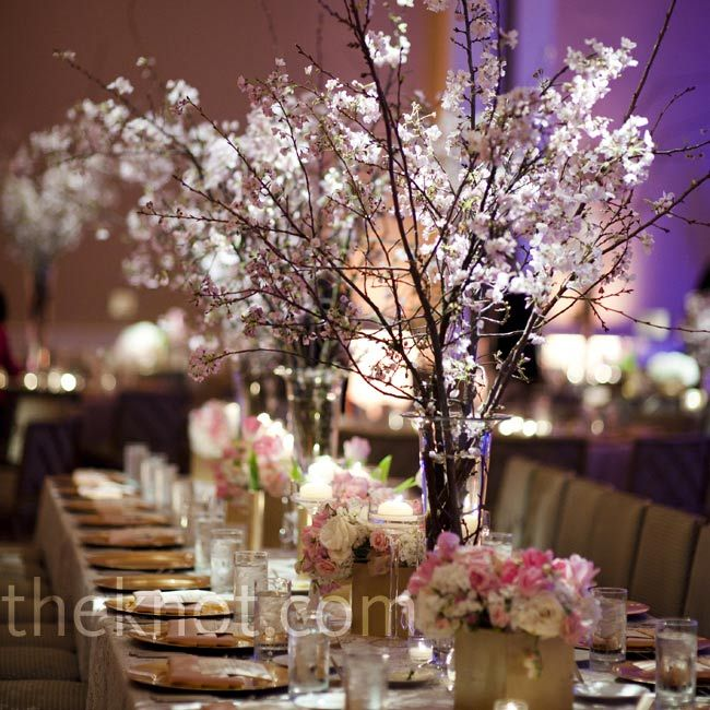 25 best cherry blossom wedding images on pinterest cherry cherry blossom centerpieces junglespirit Gallery