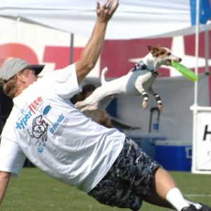 Coolest Vacations for Dog Lovers: Skyhoundz Frisbee Dog Championships