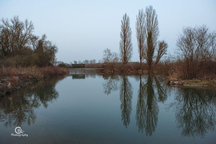 Reserve Naturelle du Rohrschollen, Strasbourg, France.