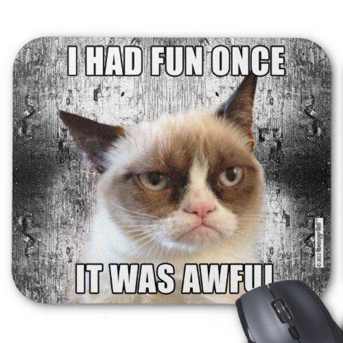 Grumpy Cat    Mousepad - I had fun once Angry Cat Meme I Had Fun Once