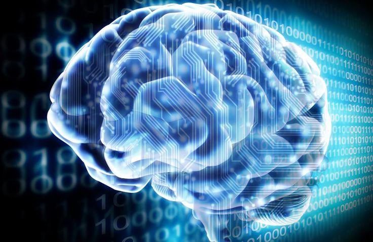 Bilim insanları insan zekasının algoritmasını keşfetmiş olabilir