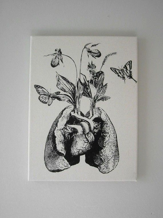 Human Lung Heart Growing Wild Flowers And Orchids