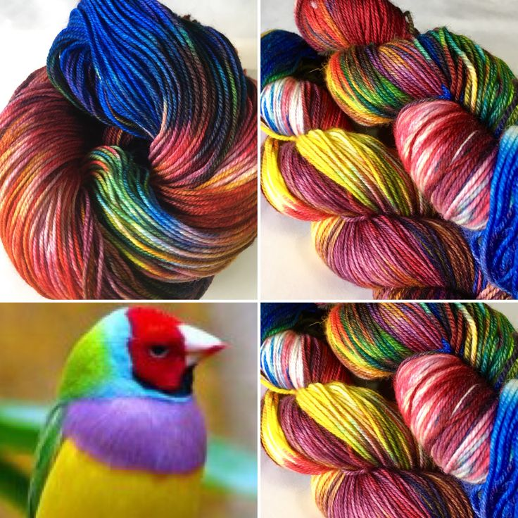 Gouldian Finch on 80/20 sock yarn. Visit songbirdfibres.bigcartel.com