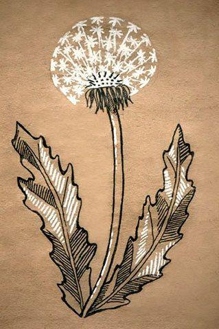 Dandelion by Euglena | Одуванчик