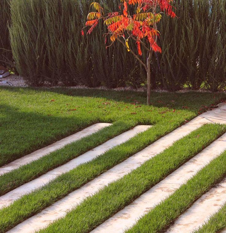 Romanian Garden designer - Bucharest. Modern pavement, simple lines, concrete.Proiect design gradina moderna minimalista Arhitect Peisagist Alexandru Gheorghe