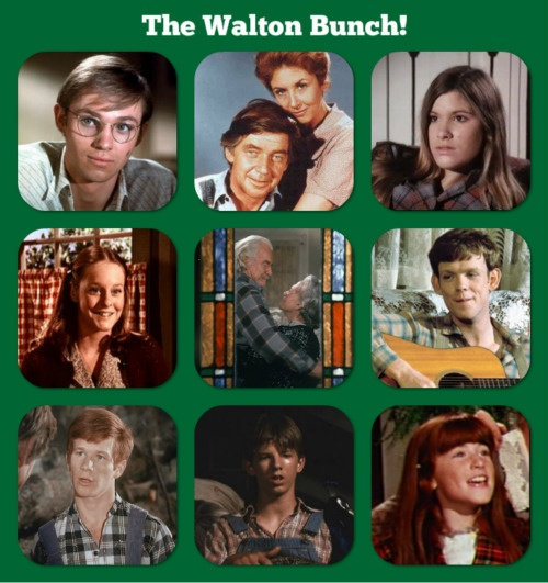 c435deb85983e312a89788b818df4581 mama mary timeless classic 212 best the waltons images on pinterest mountain, television,Mary Ellen Meme