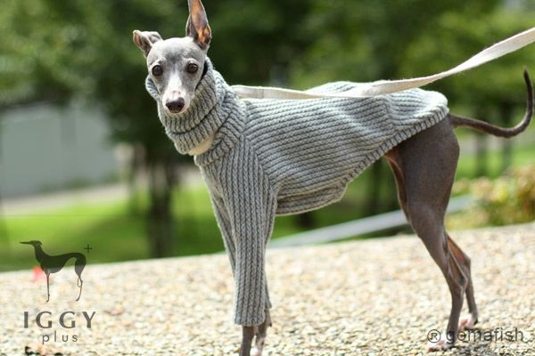 This Italian Greyhound sweater is hand-made product from Japan. One of the various designs. It is limited sweater because of scarce material. Hurry-up!! See the details and wonderful the design!