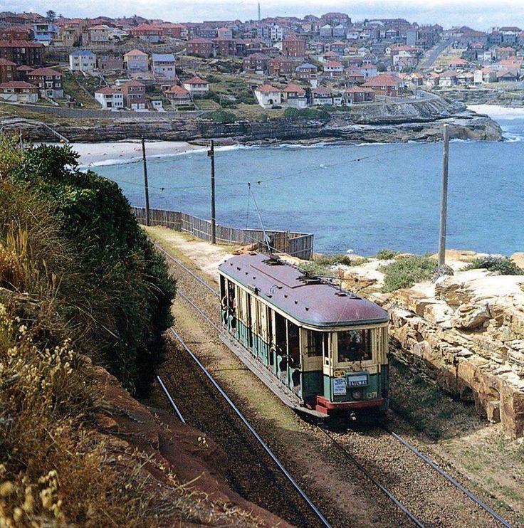 Tram in Bondi