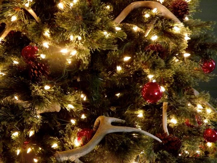 35 Best Antler Christmas Trees Images On Pinterest