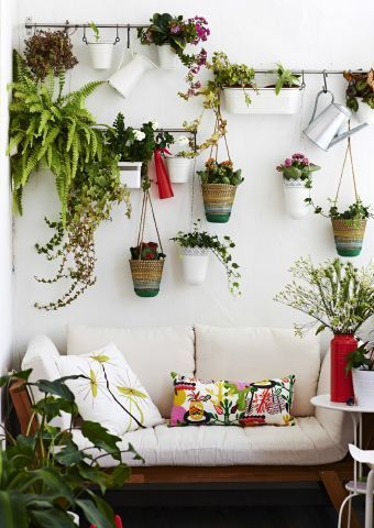 Create a vertical garden on an unused wall for a lovely green view