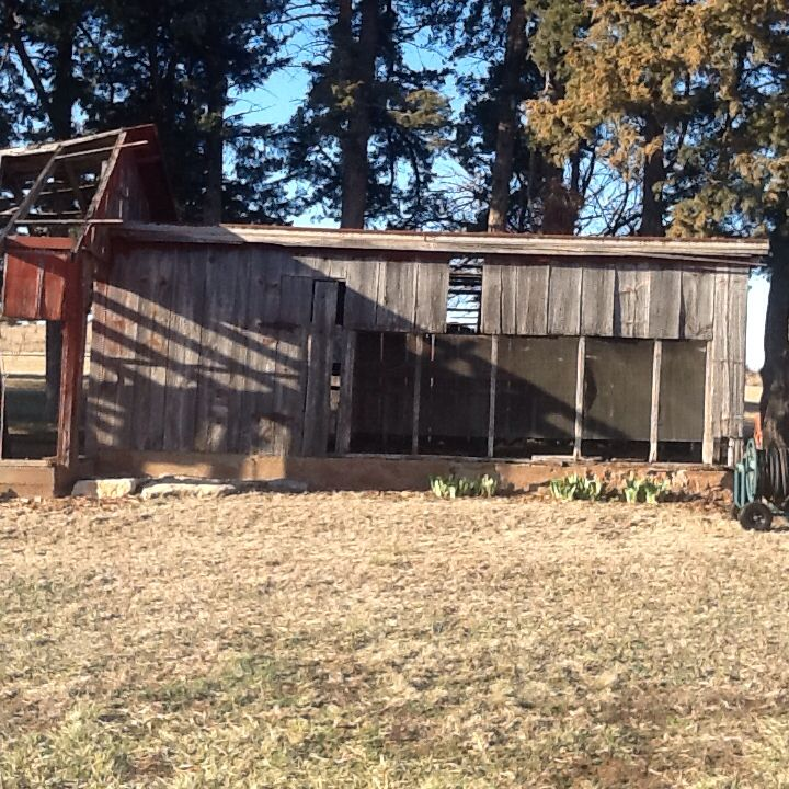 1000+ Images About OLD CHICKEN COOP's On Pinterest