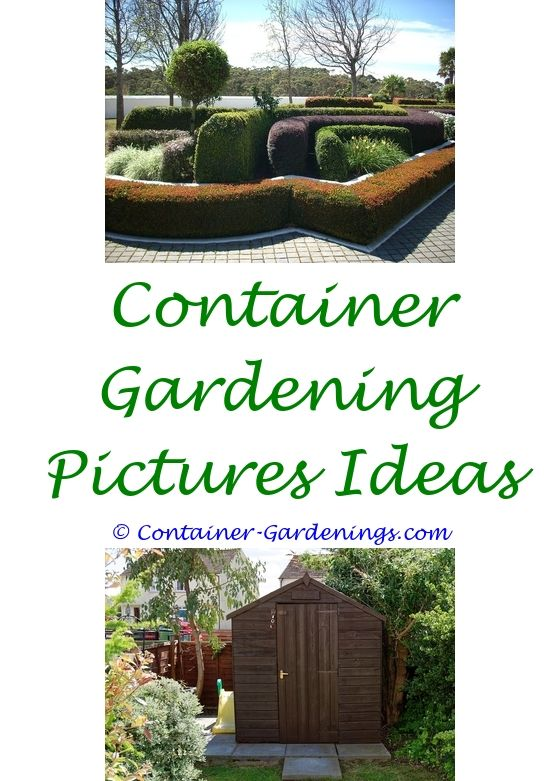 garden bed ideas australia - busch gardens williamsburg reviews tips.center island garden idea simple backyard garden ideas garden shed ideas images 8452872767