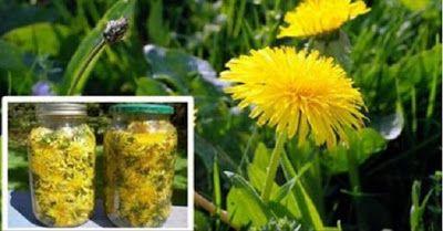 Pesquisa do Departamento de Química e Bioquímicada da Universidade de Windsor, no Canadá, obteve re...