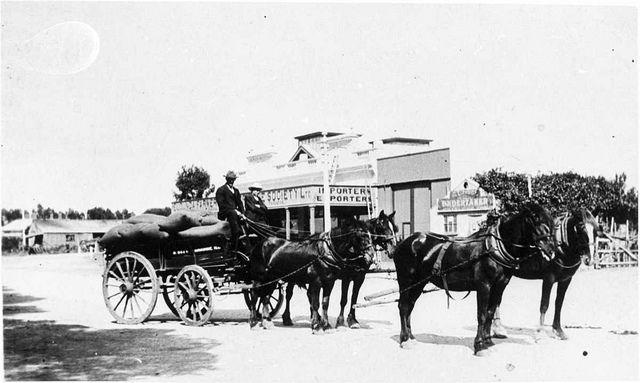 Murray Bridge, South Australia, 1900 - Horse-drawn wagon in the main street of Murray Bridge, passing Eudunda Farmers store and an undertaker's premises.
