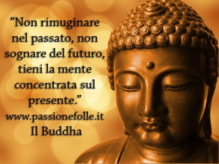 Popolare 43 best Frasi Buddha images on Pinterest BT21
