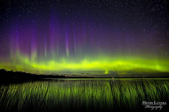 Aurora Borealis. Lake Oulujärvi, Finland
