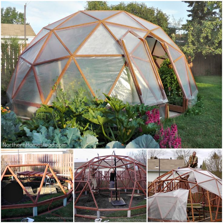 23 Best Dome Greenhouse Images On Pinterest