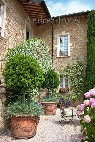 Standard Laurus nobilis (Bay) trees, Convolvulus cneorum (Morning Glory) and Petunias. Walls covered by a white flowering Trachelospermum jasminoides (Star jamsine). Borgo Santo Pietro, Siena, Tuscany, Italy © Andrea Jones/Garden Exposures Photo Library.