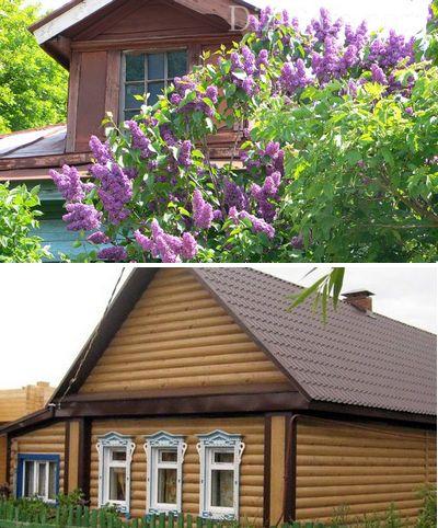 Ландшафтный дизайн деревенского дома - все про деревенский стиль на даче
