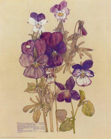 rennie mackintosh watercolours - Google Search