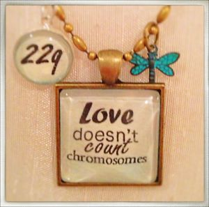 Love doesn't count chromosomes. 22q awareness. I LOVE this. My son has the duplication and some days are more challenging then the next.