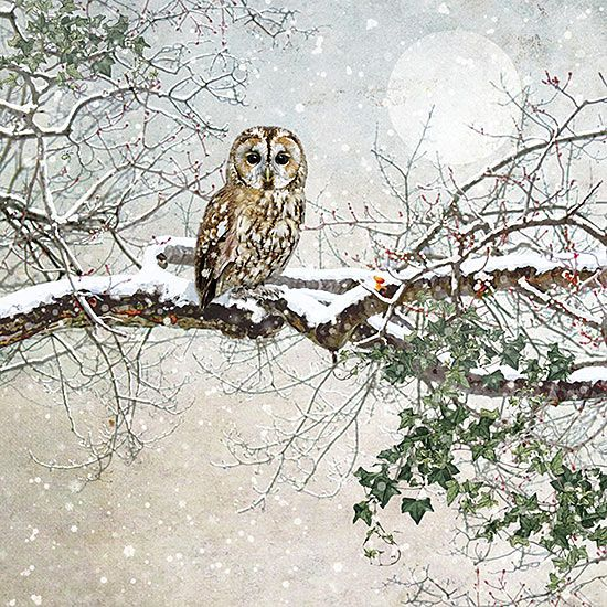 ✻BugArt Christmas Landscapes ~ Tawny Owl. CHRISTMAS LANDSCAPES Designed by Jane Crowther. Original Art Photography by Lynnette Henderson.