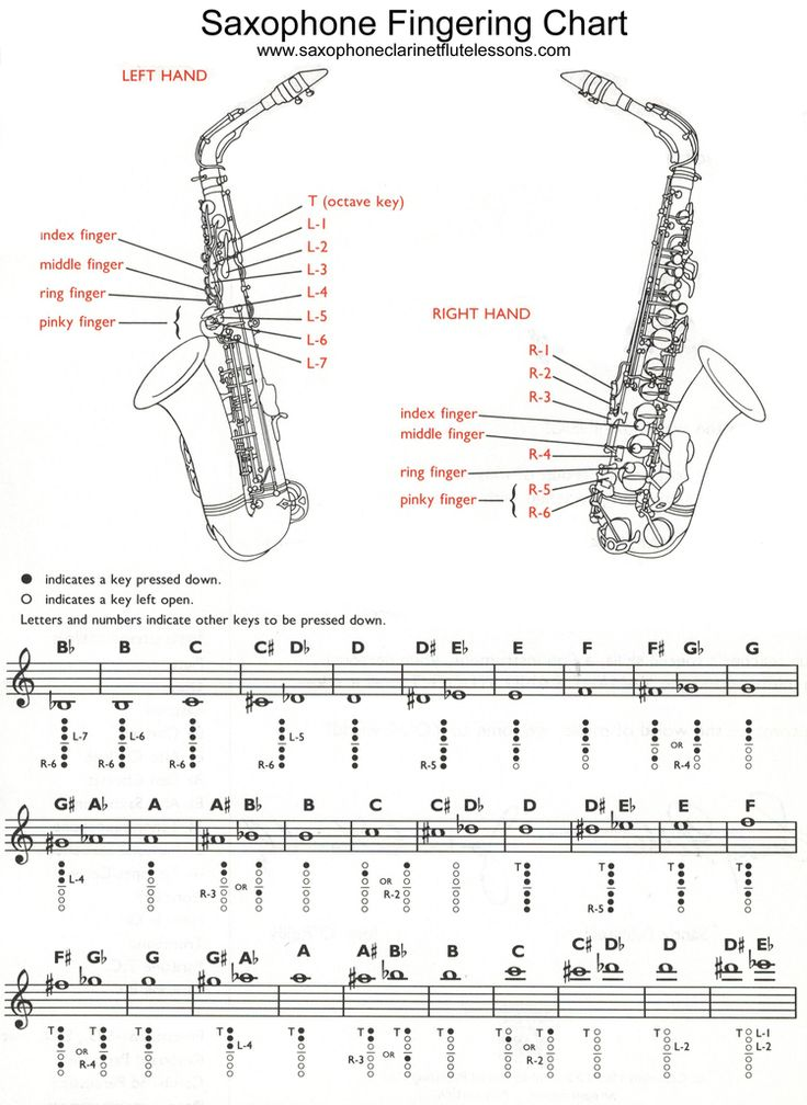 Best 25+ Alto saxophone fingering chart ideas on Pinterest - clarinet fingering chart
