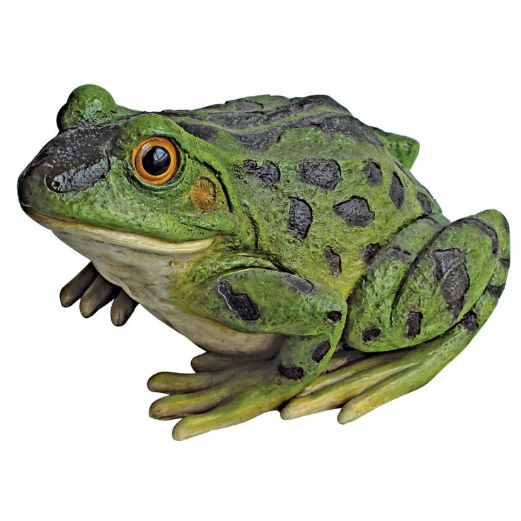 1917 Best Frogs Images On Pinterest Frogs Painted Rocks 400 x 300