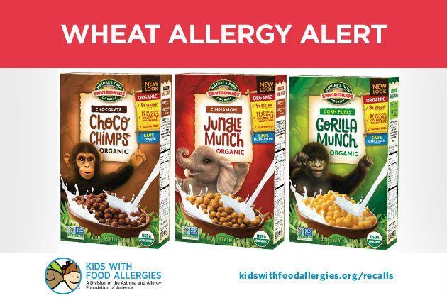 Wheat Allergy Alert Environ Kidschoco Chimps Gorilla Munch And