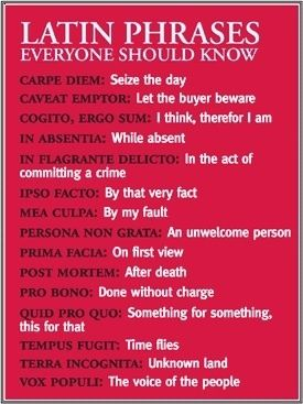 Basic Latin phrases everyone should learn. I actually only took Latin for one year, so I hope these are accurate!