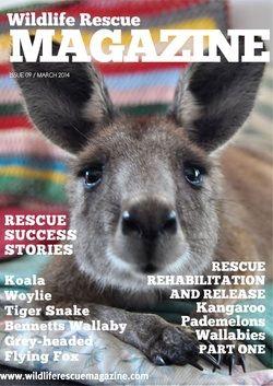issue 9 #tiger_snake #wallabies #kangaroos
