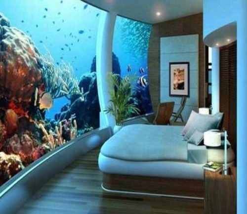 71 Best Home - Fish Tanks Images On Pinterest