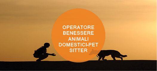 Perchè iscriversi al corso di Operatore benessere degli animali domestici – Pet sitter