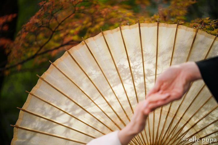 秋色にそまった茶室堪庵*ロケーション撮影   *elle pupa blog*